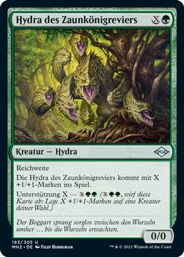 Hydra des Zaunkönigreviers
