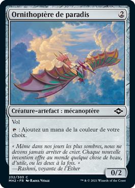Ornithoptère de paradis