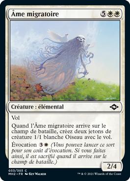 Âme migratoire