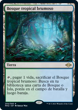 Bosque tropical brumoso