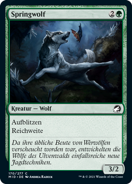 Springwolf