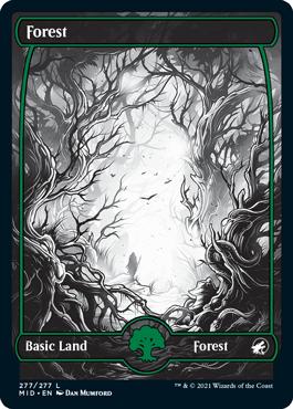 Forest eternal night full-art basic land variant