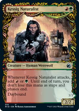 Kessig Naturalist