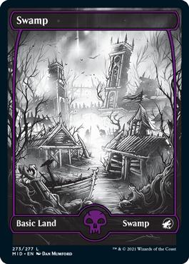 Swamp eternal night full-art basic land variant
