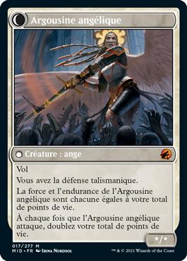 Argousine angélique