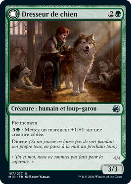Dresseur de chien