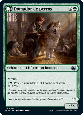 Domador de perros