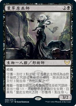 蓑草原巫師