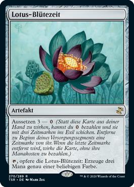 Lotus-Blütezeit