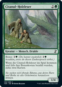 Citanul-Holzleser