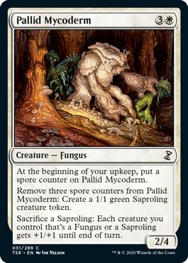 Pallid Mycoderm