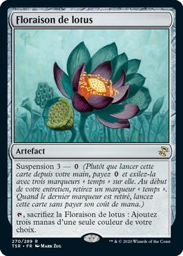 Floraison de lotus