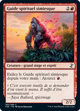 Guide spirituel simiesque