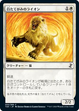 白たてがみのライオン