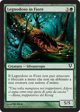 Legnodoso in Fiore - Flowering Lumberknot