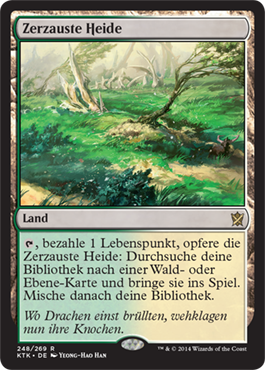 Zerzauste Heide