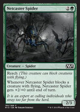 Netcaster Spider