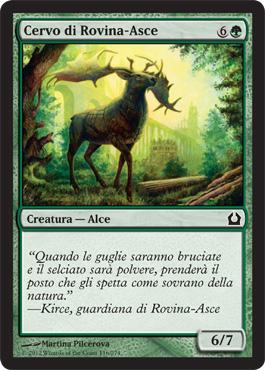 Cervo di Rovina-Asce