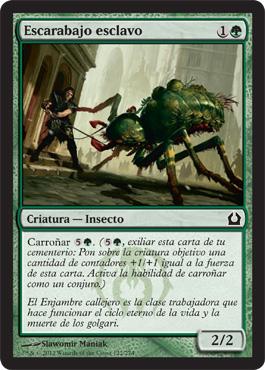 Escarabajo esclavo